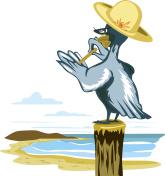Pelican Bird Polish Treatment Nail Wings Nails Tree Trunk Beach