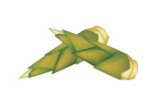 Fresh Bamboo Shoots on A White Background
