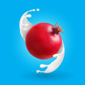 Pomegranate in milk splash. Garnet in yogurt vector