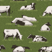 Cow Color Pattern