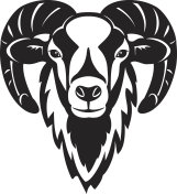 Mouflon sheep  head vector illustration