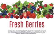 Fresh berries and fruits vector poster or banner