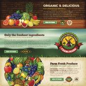 Organic Farm Fresh Web Banner Set