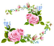 Collection of branch curly pink rose, bouquet with blue flowers forget-me-nots, buds, green stems, leaves on white background, digital draw illustration, concept for design, vintage set, vector