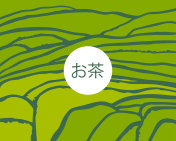 Tea plantation on cascades field. Tea on Japanese