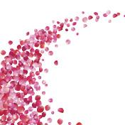 pink rose petals vortex