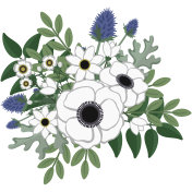 Rustic Anemone and Eucalyptus Floral Arrangement Illustration