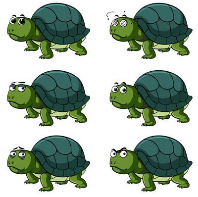 龟与不同的面部表情