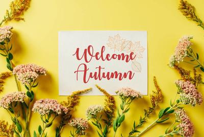 """平躺与美丽的野花和卡片与 """"欢迎秋天"""" 刻字在黄色背景"""