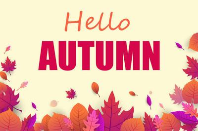 黄色你好秋天海报与粉红色的叶子