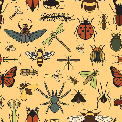 昆虫无缝模式。24 件套