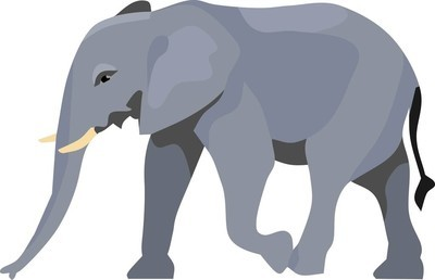 大象动物矢量图