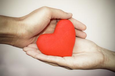 手保护玩具的心