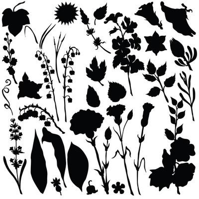 矢量轮廓的不同颜色的花