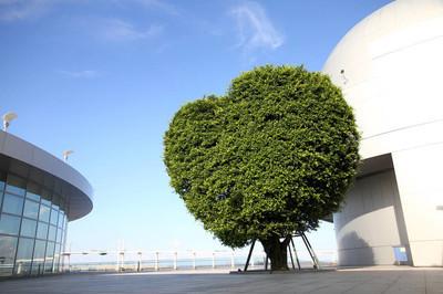 心形树, 澳门科学中心, 澳门, 中国