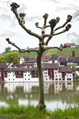 瑞士农村的河流景观
