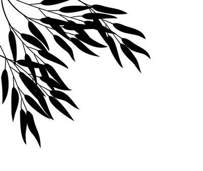 竹、 矢量图
