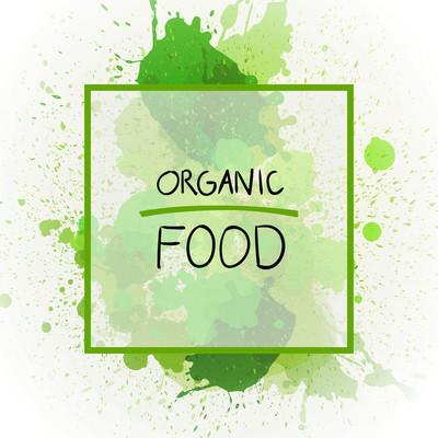 Organic Food  Banner