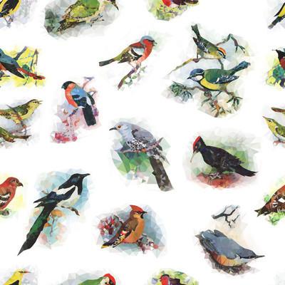 低聚收集的森林鸟