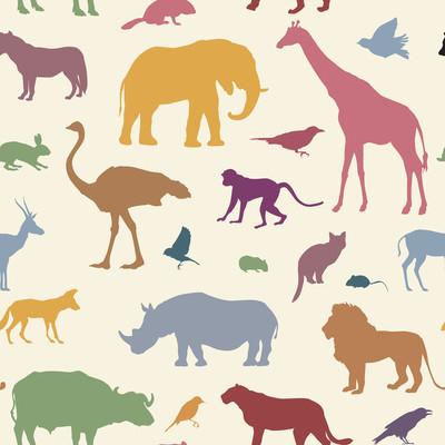 野生动物剪影