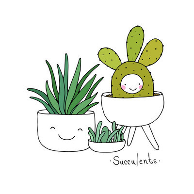 卡通可爱多肉植物盆栽