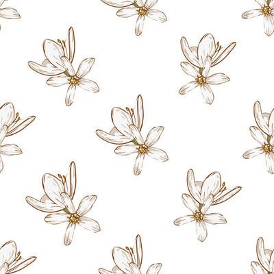 手绘白色花朵图案
