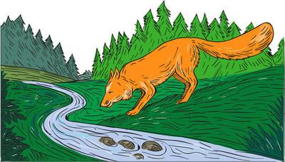 福克斯喝河森林溪绘图