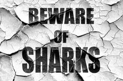 垃圾破解鲨鱼标志当心