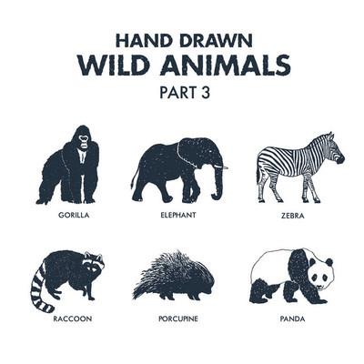 手绘野生动物图标集