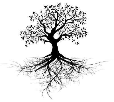 整个黑树与根