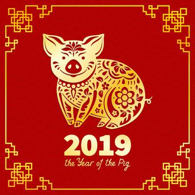 2019年的猪