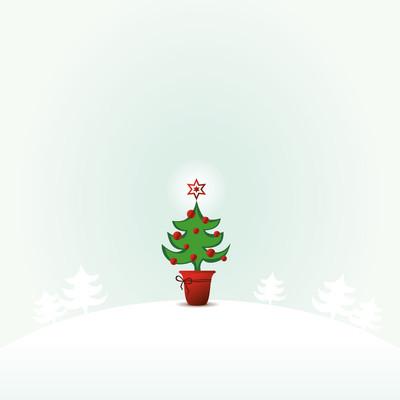 圣诞节的时候
