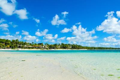 热带海岸的美丽的夏天风景