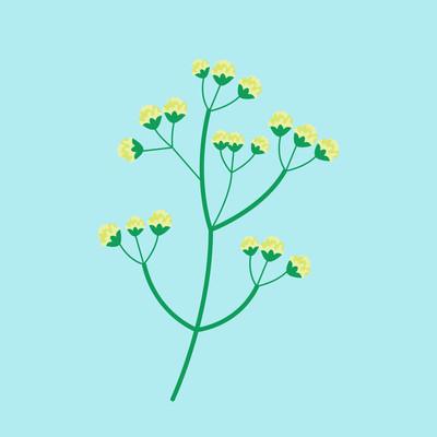 花夏季天然植物矢量图
