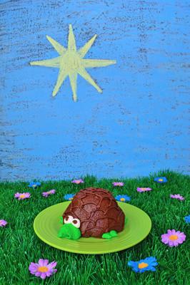 乌龟与夏季主题蛋糕