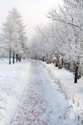 冬季城市景观