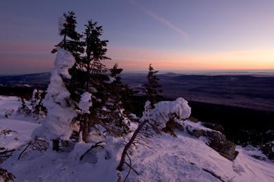 冬季雪盖 landscape.snow trees.sunset