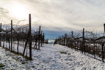 意大利字段与雪