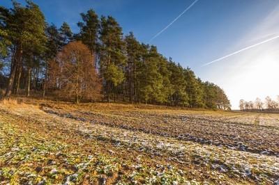 初冬场景观