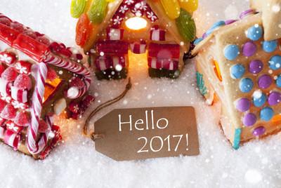多彩的姜饼房子,雪花,文本你好 2017