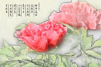 惟有牡丹真国色, 花开时节动京城。  PS后期转国画水墨风格。