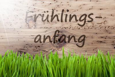春天的阳光明亮的背景,鹅肝,Fruehlingsanfang 手段开始