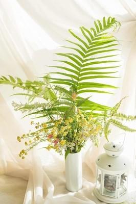 立秋许久了 天气依然燥热 顶着骄阳在后山转悠 顺手采了一些接近枯萎的花材 做了一个野生系插花 不花钱的美好