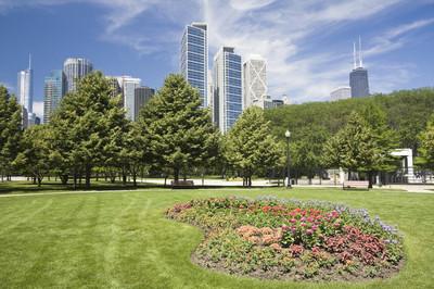在市中心的鲜花芝加哥