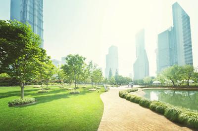 公园在陆家嘴金融中心,上海,中国