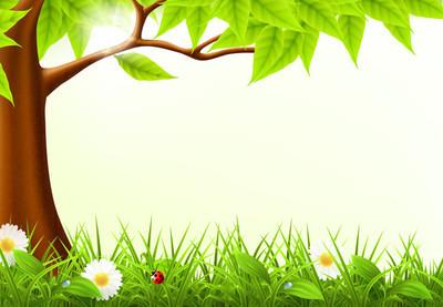 绿树框架 10eps