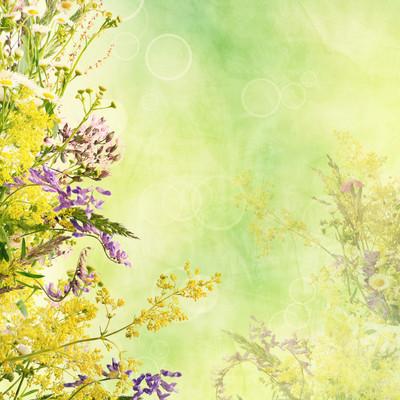 花卉复活节背景