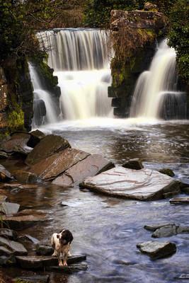 Penllergare 瀑布斯旺西威尔士