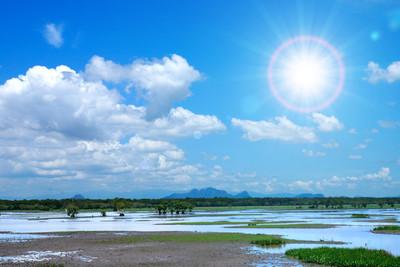 泰国南部的野生动物保护区