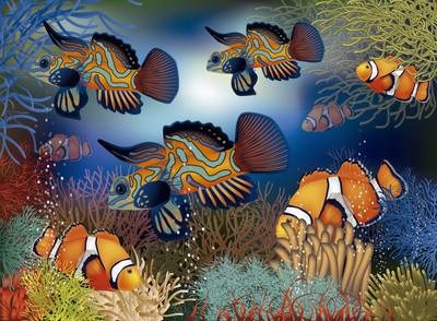 水下的壁纸与热带鱼,矢量